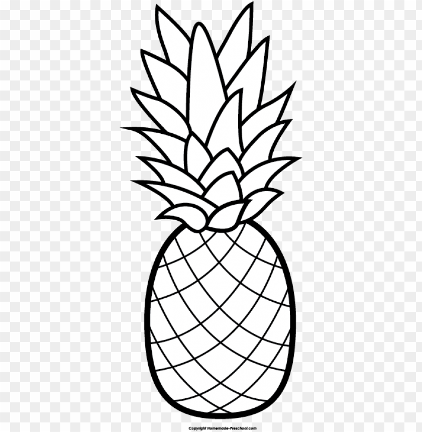 banner transparent download pineapple free clip art.