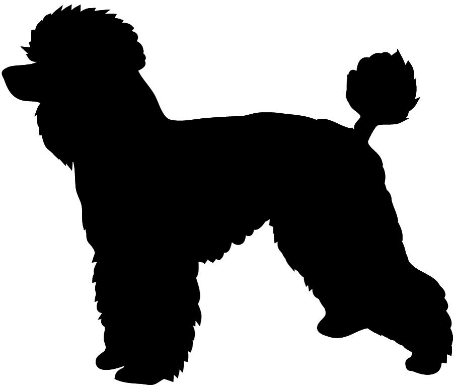 Poodle With Leash Silhouette Clipart.