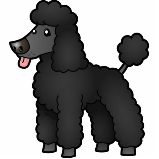 Pin on Poodles.