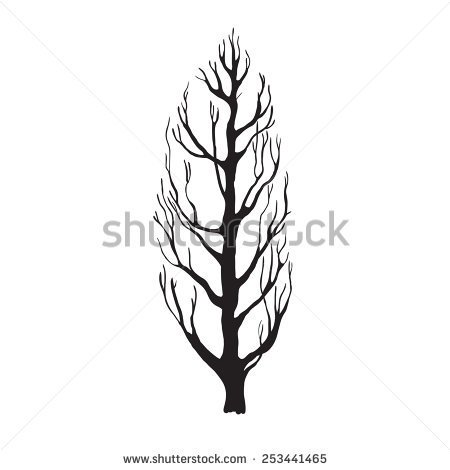 Poplar tree clipart black and white.
