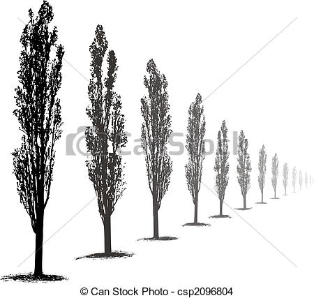 Poplar tree Clip Art and Stock Illustrations. 1,107 Poplar tree.