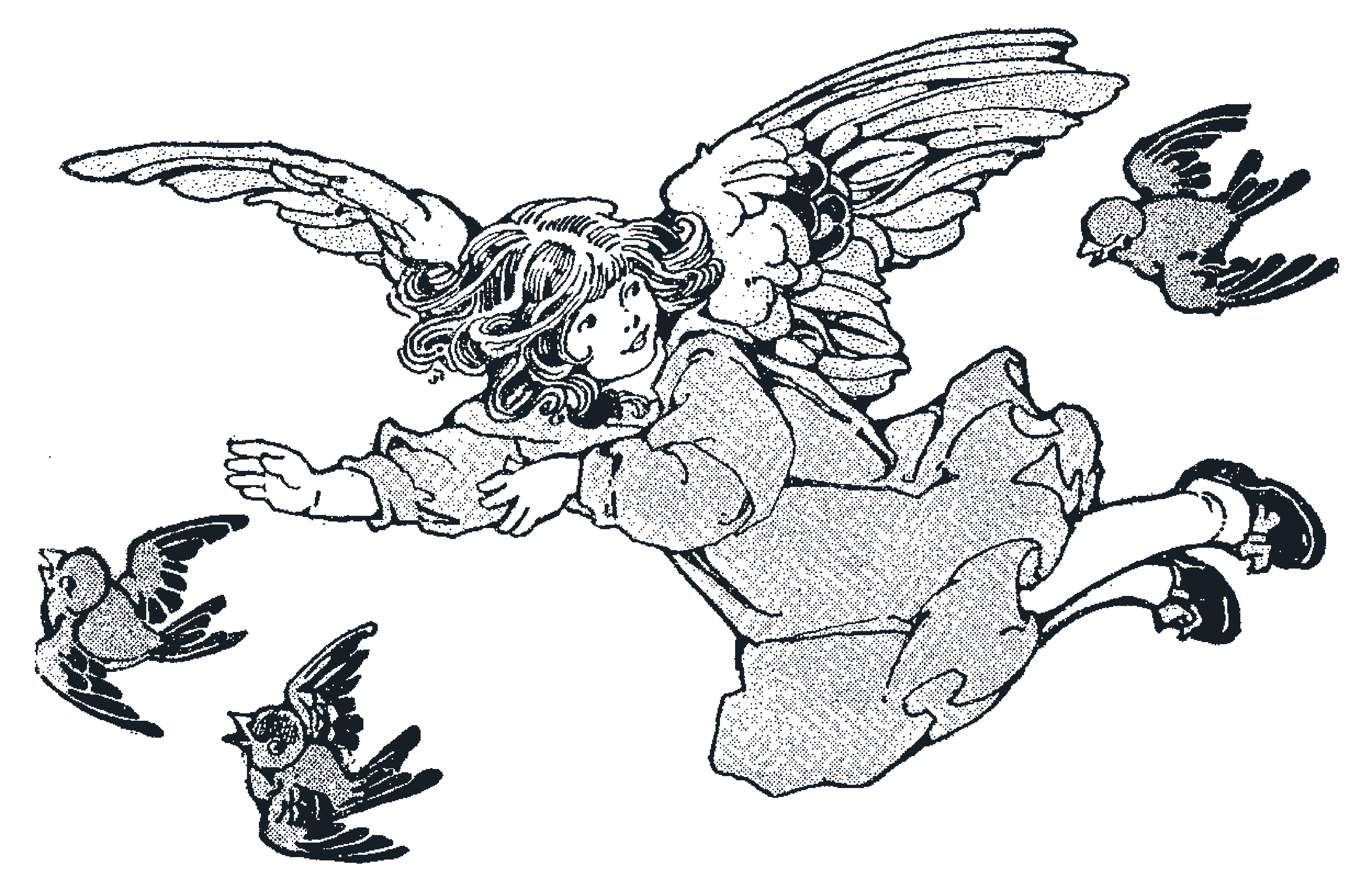 Vintage Angel and Birds From Primer 1916.