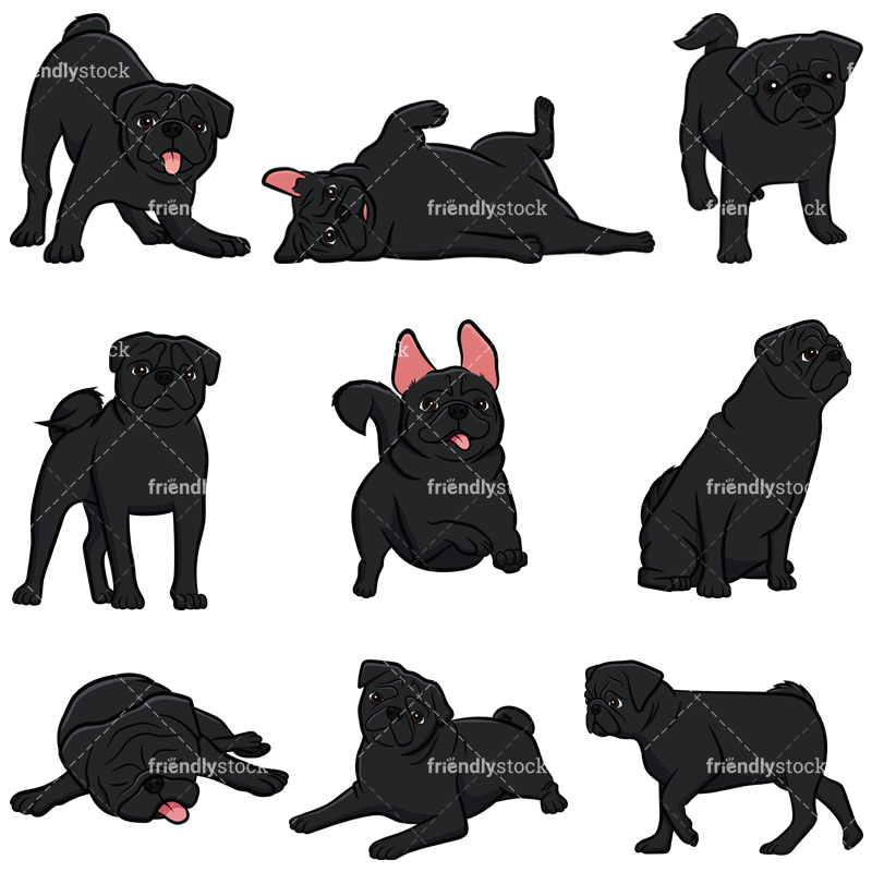 Black Pug Dogs Collection.