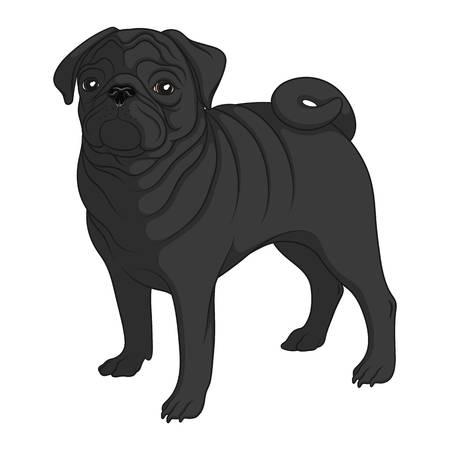 1,514 Black Pug Stock Vector Illustration And Royalty Free Black Pug.