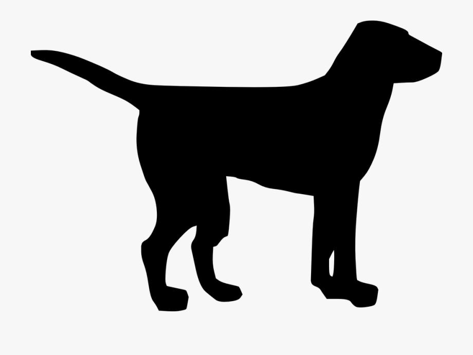 Golden Retriever Clipart Puppy Dog Tail.