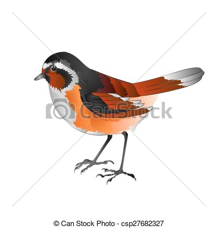 Vector Illustration of Small bird Black Redstart.eps.