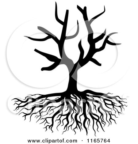 Free tree with roots clipart black and white and lables.