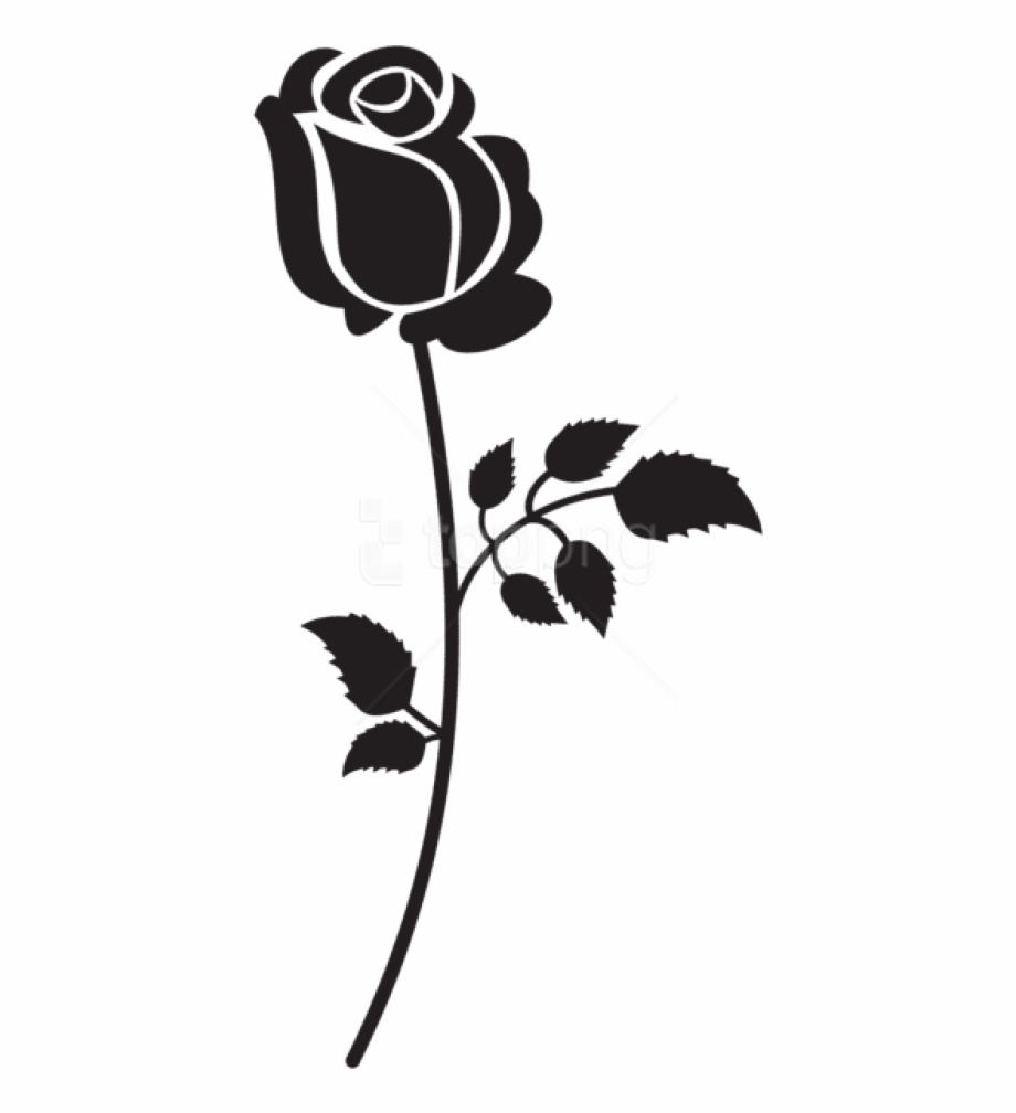 Flowers Silhouette Png.