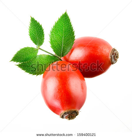 Rosehip Stock Photos, Royalty.