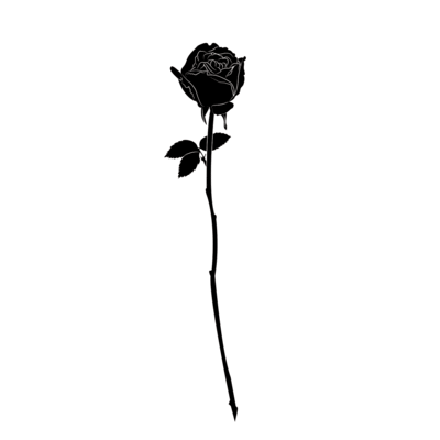 Black Rose Png (74+ images in Collection) Page 1.