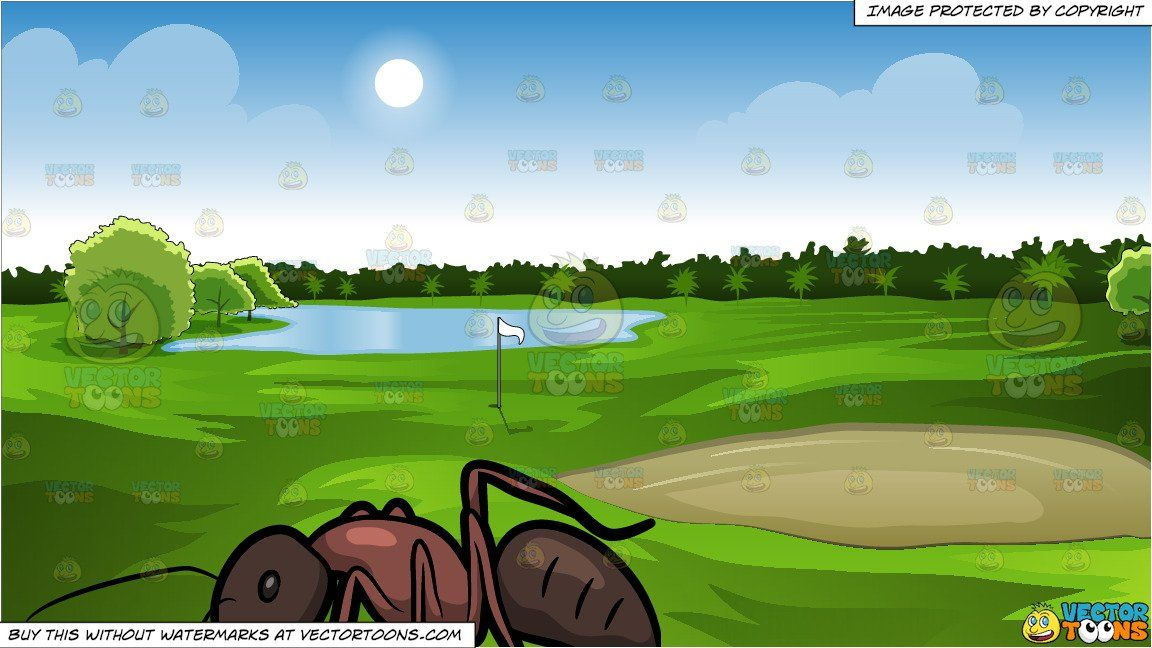 A Carpenter Ant and Green Golf Course Background in 2019.