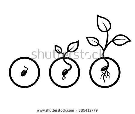 Seed growing to tree clipart black and white.
