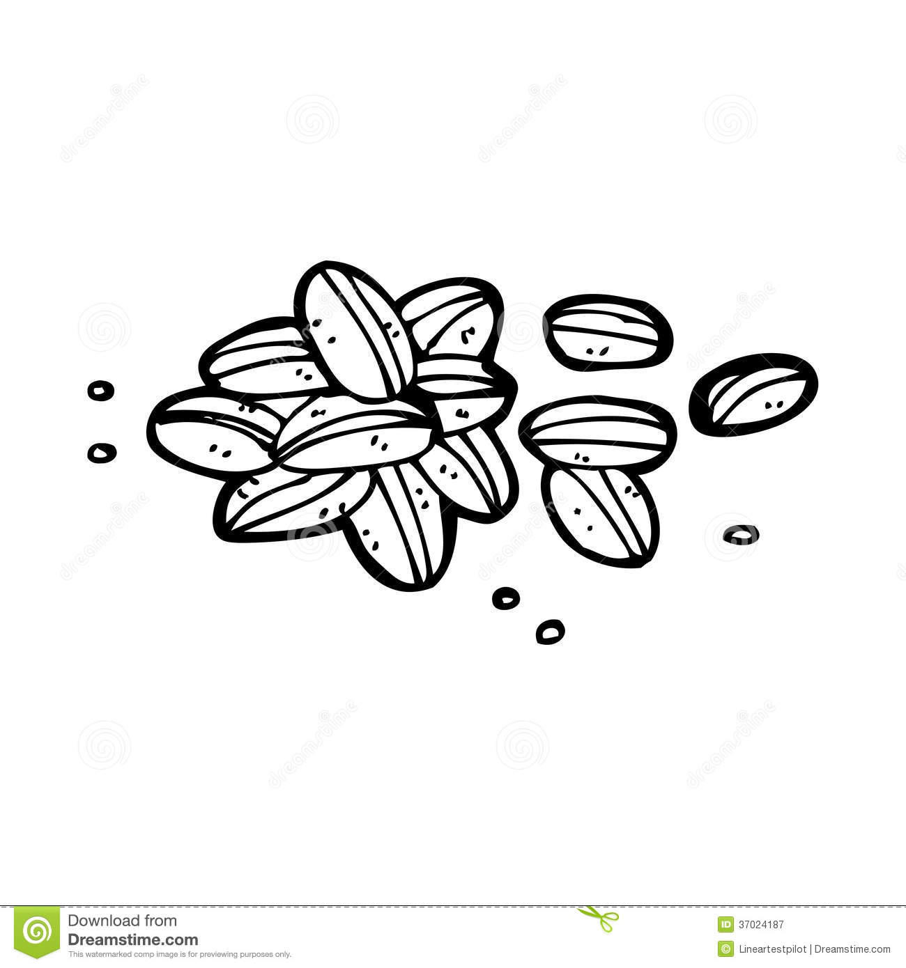 Seeds clipart black and white.