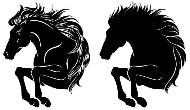 Best Black Horse Running Illustrations, Royalty.