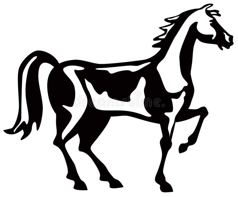 Black Stallion Stock Illustrations.