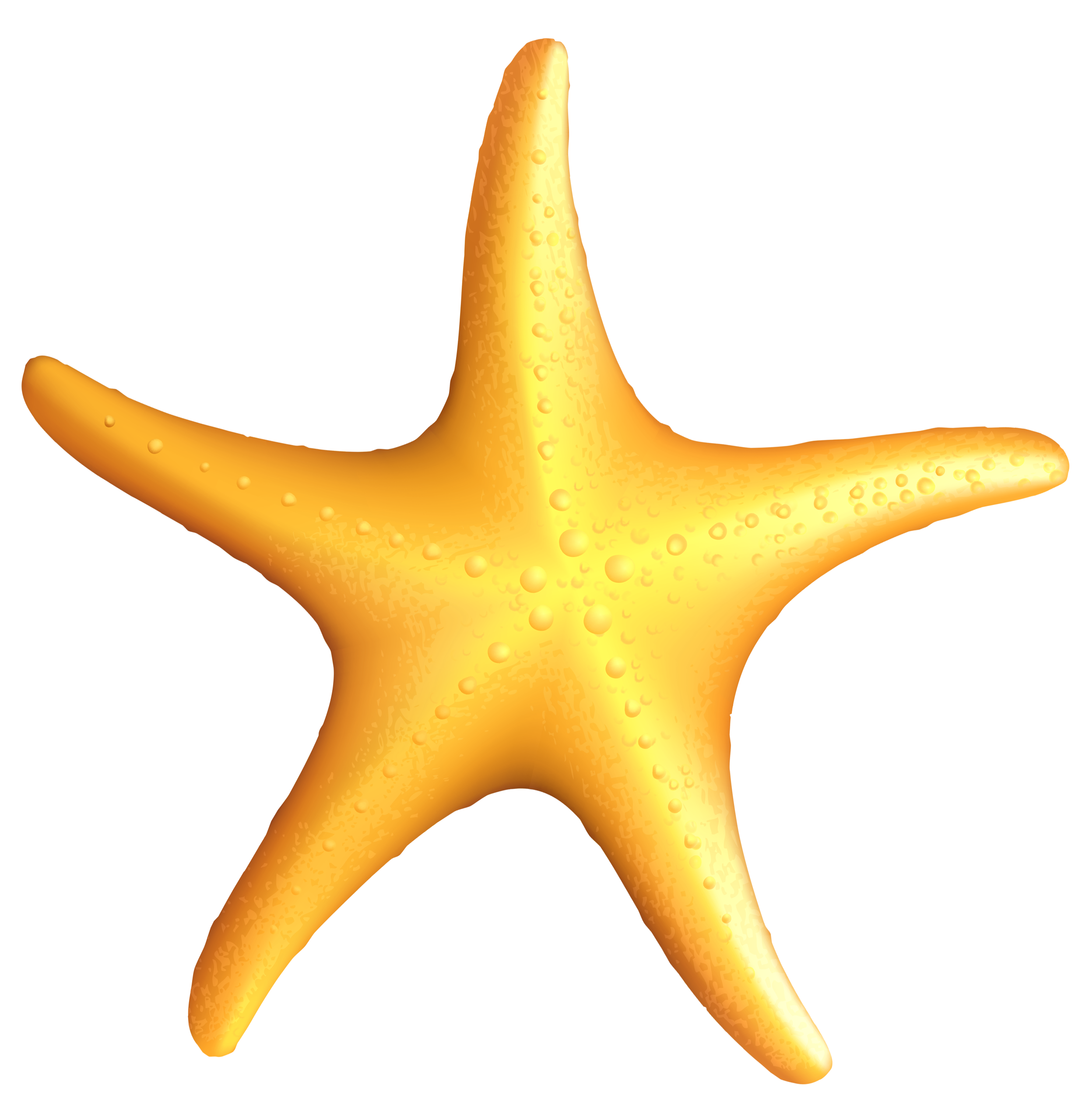 Free Starfish Clipart Transparent Background, Download Free.