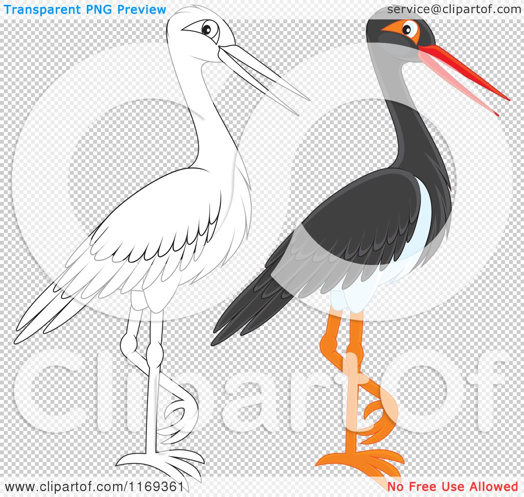 Cartoon of a Standing Outlined and Black Stork Bird.