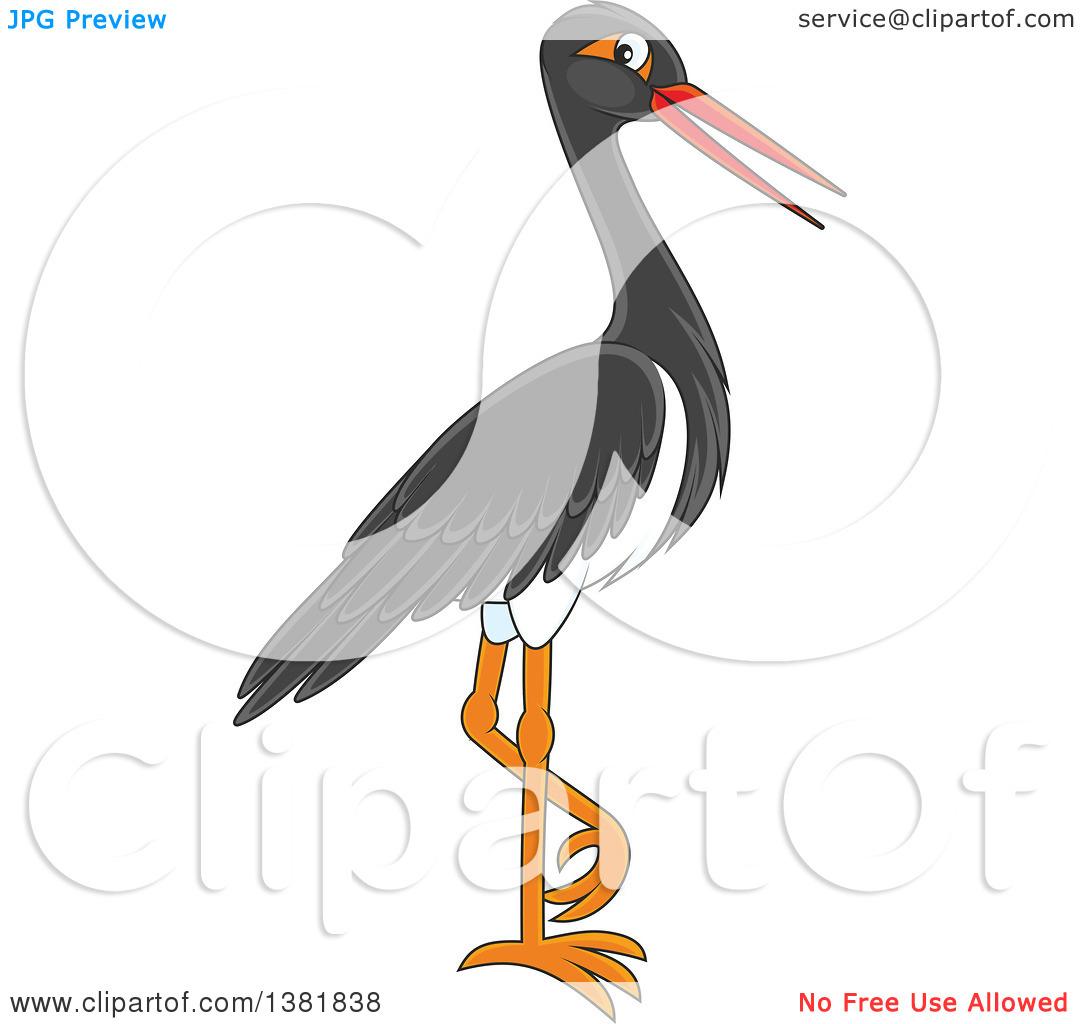 Clipart of a Black Stork Bird.