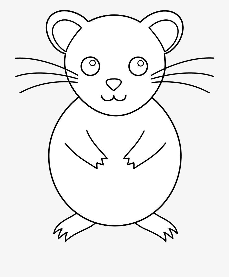 Hamster clipart colour, Hamster colour Transparent FREE for.
