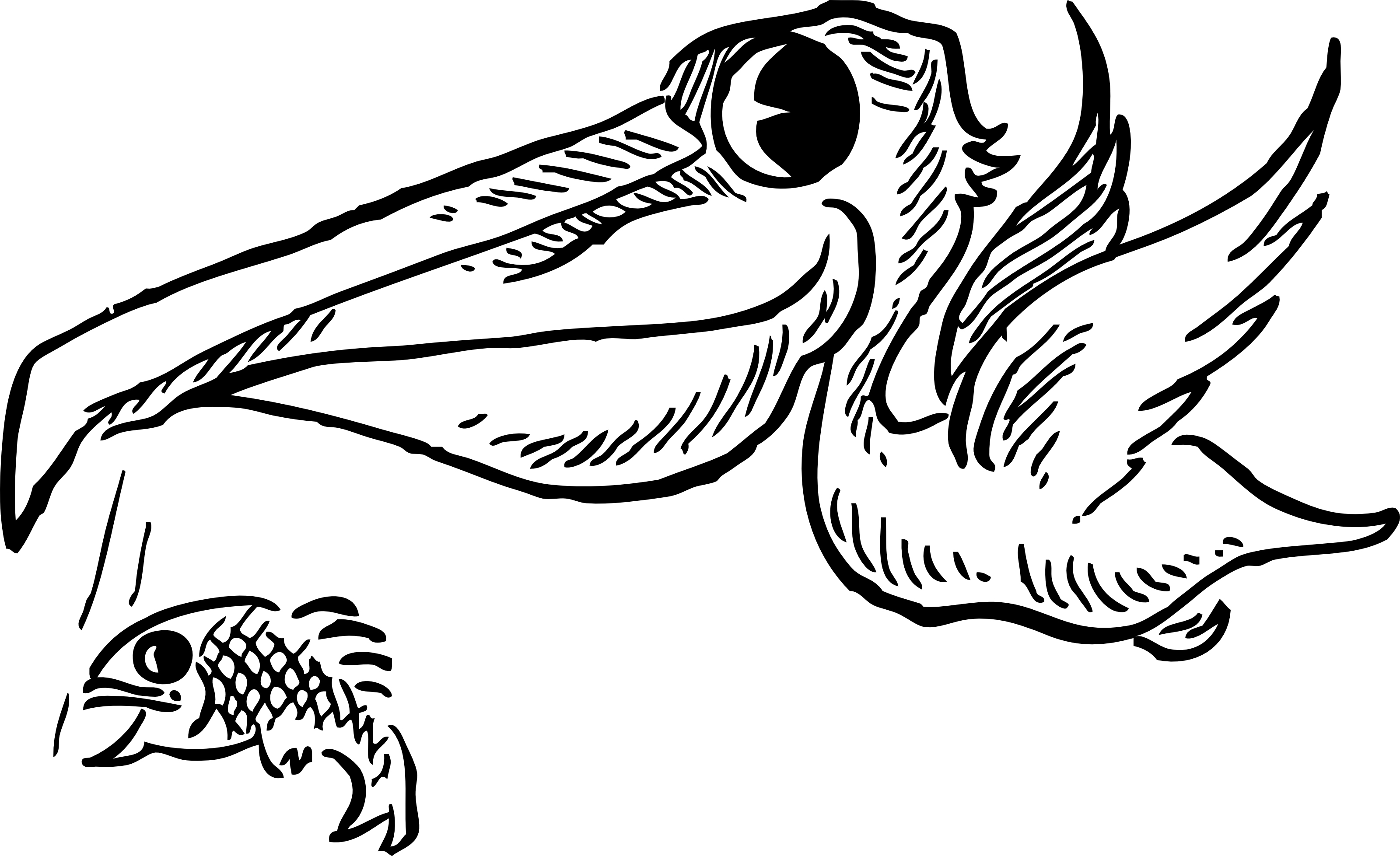 Retro Clipart Illustration Of A White Pelican Catching Fish.