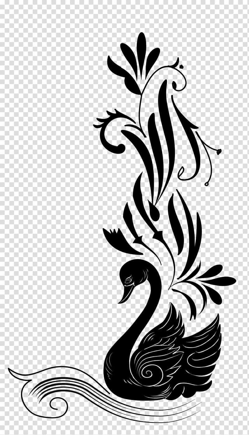 Black swan drawing transparent background PNG clipart.