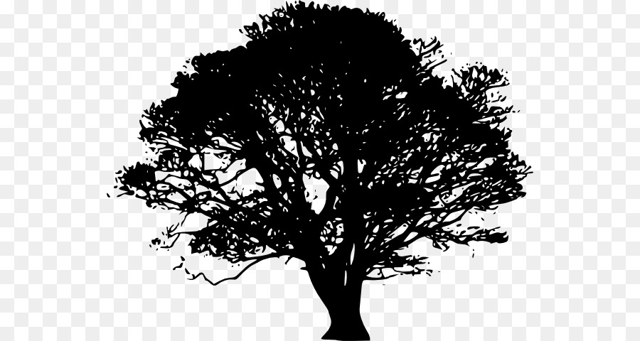Black tree clipart 4 » Clipart Station.