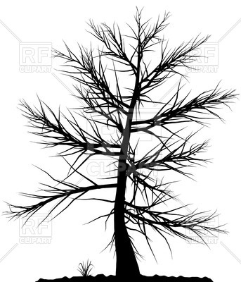 Black tree silhouette on white background Vector Image.