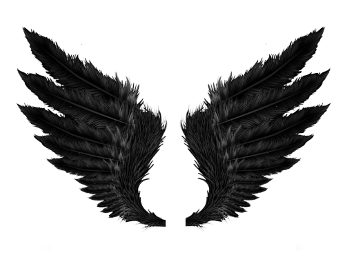 wings black tumblr png editpng dark grunge.