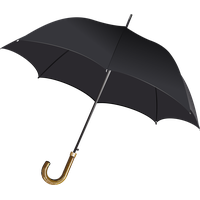 Download Umbrella Free PNG photo images and clipart.