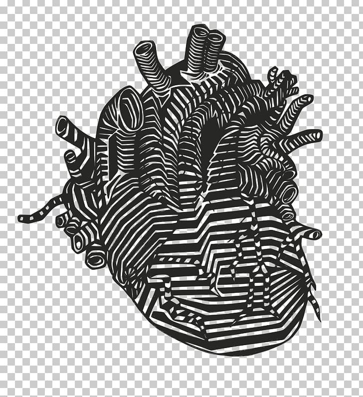 Heart Anatomy Drawing Vein PNG, Clipart, Anatomy, Artery.