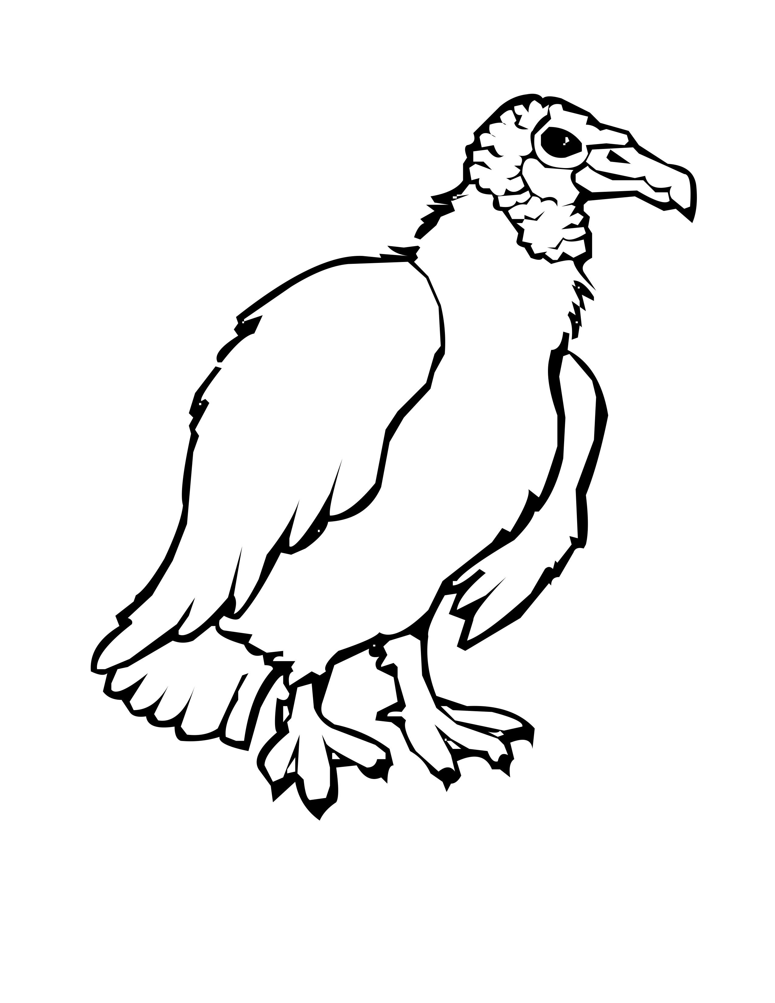 Black vulture clipart Clipground