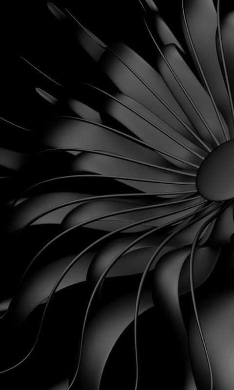 Download 480x800 «Black flower» Cell Phone Wallpaper.