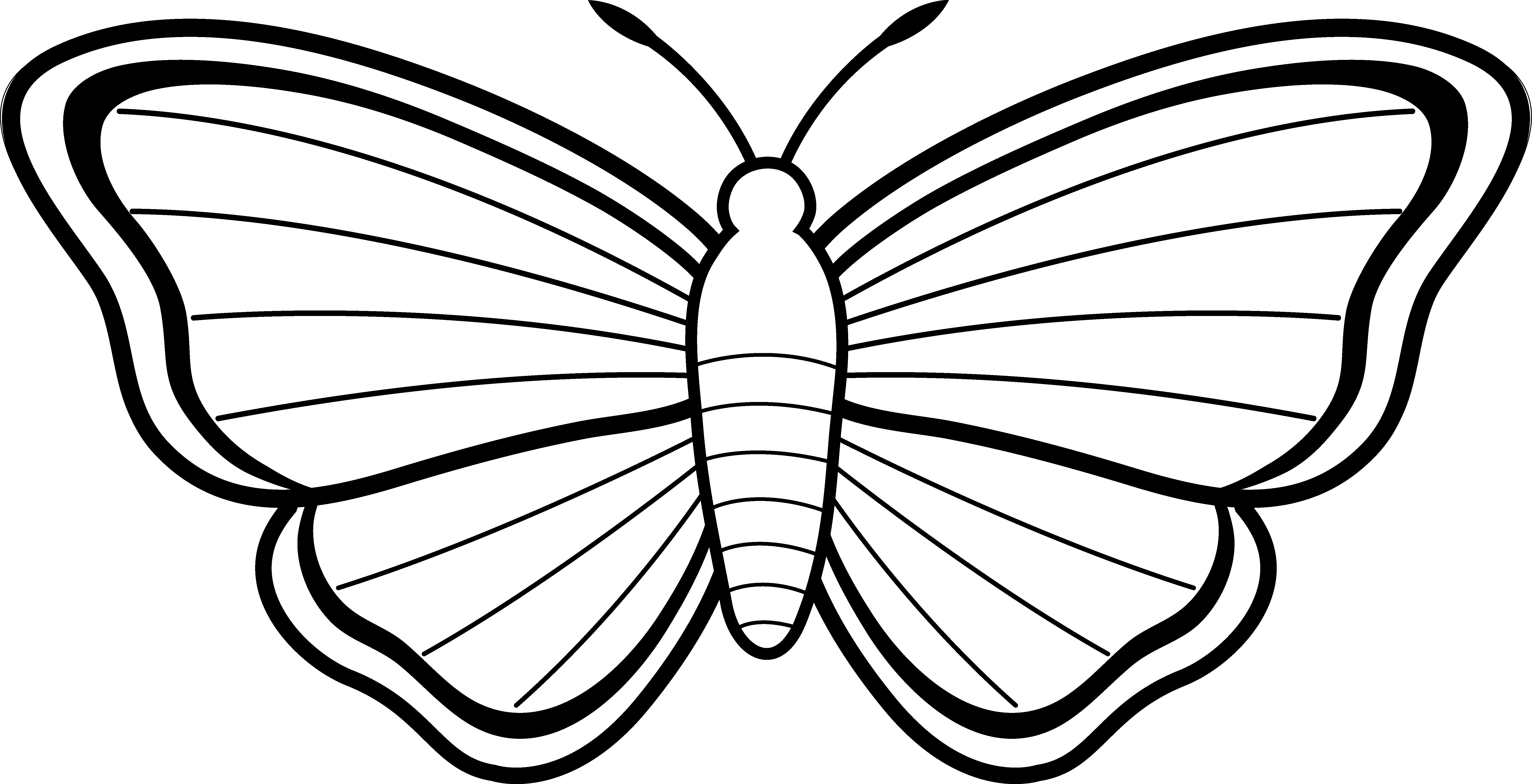 Butterfly Clipart Black And White U0026 Butterfly Black And White Clip.