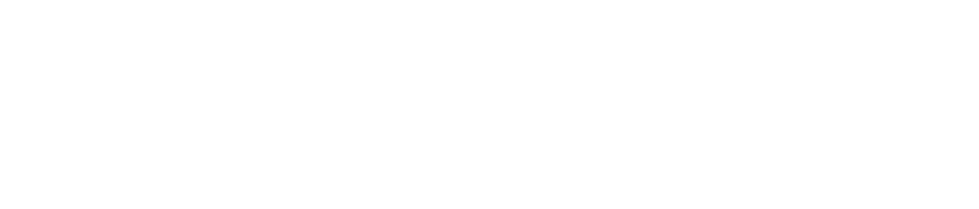 Silhouette Of Long Island.