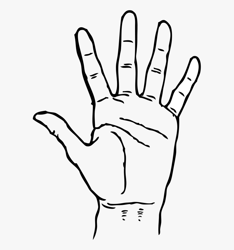 Hand Clipart Black And White , Transparent Cartoon, Free.