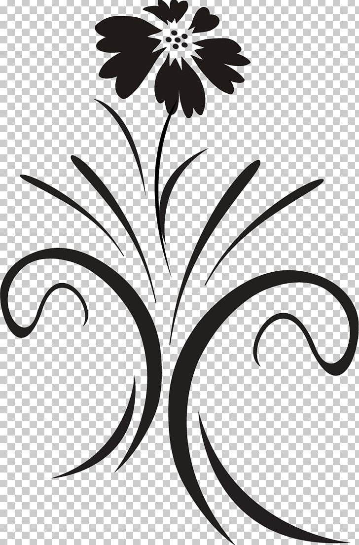 Floral Design Black And White Ornamental Plant Graphics PNG.