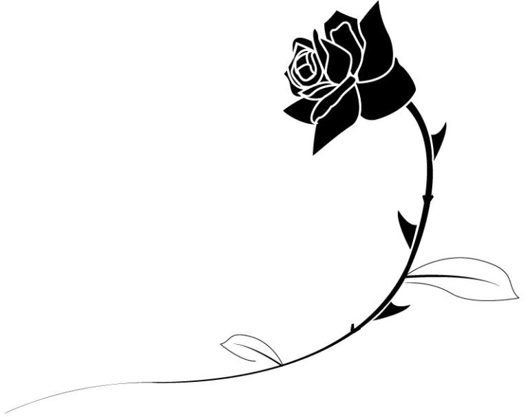 Rose Black And White.