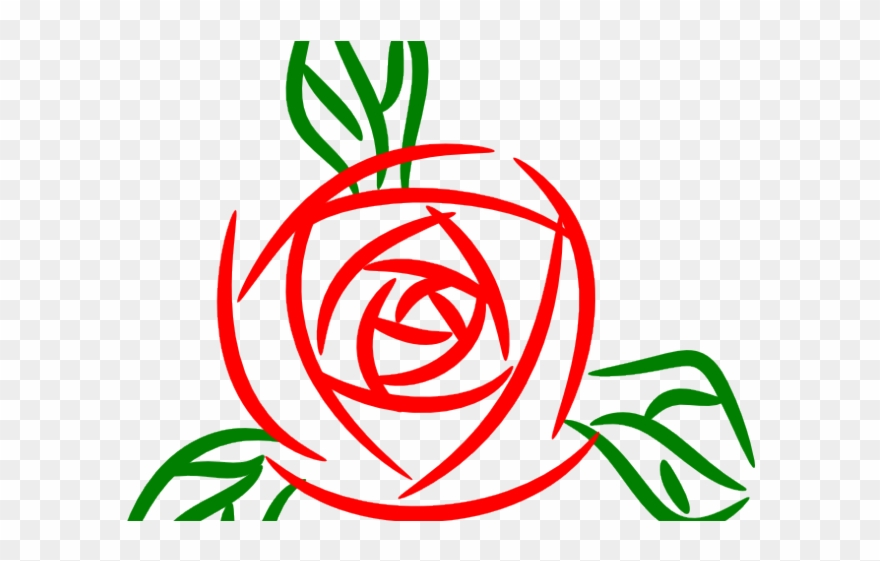 White Rose Clipart Whire.
