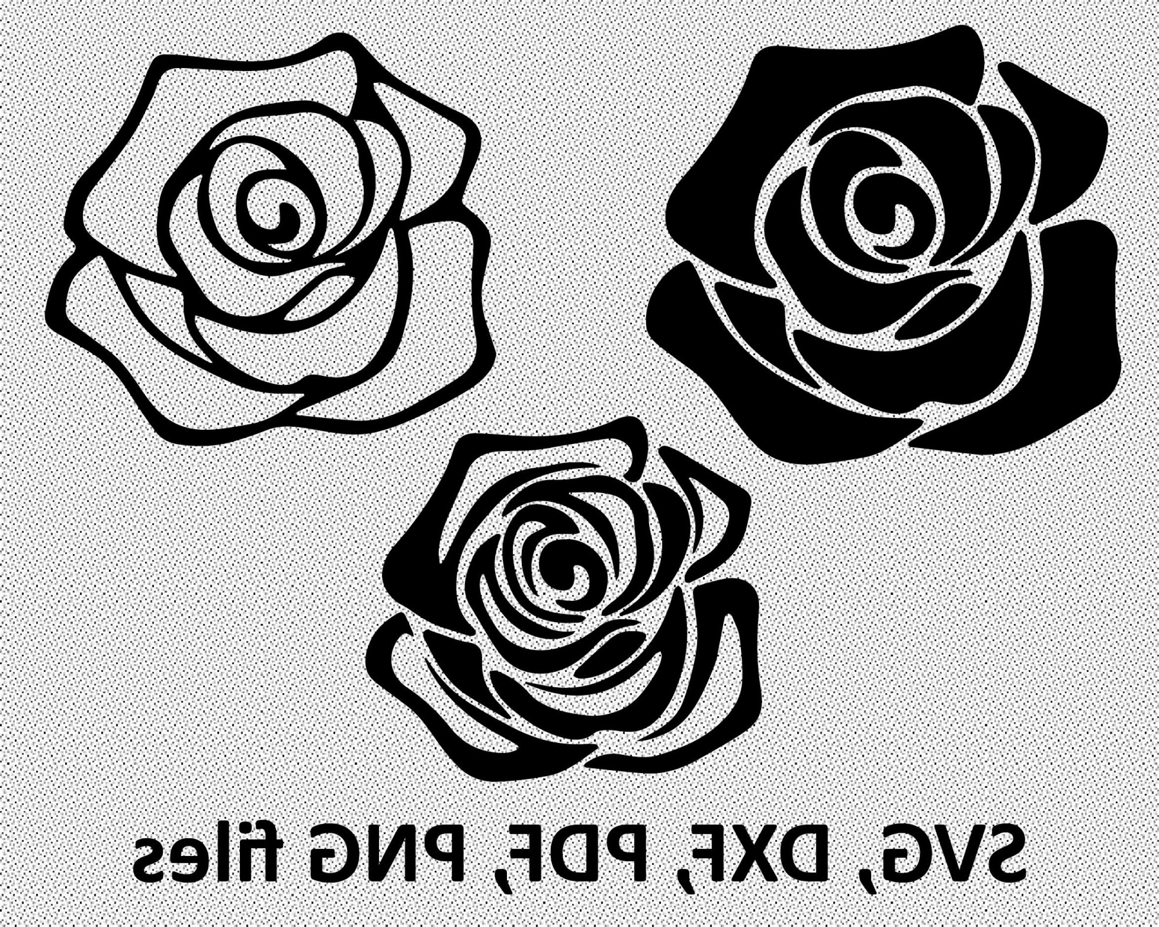 Vector Files Black And White Rose.