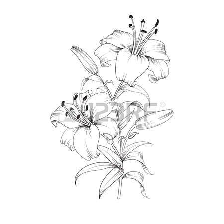 Sympathy Clipart Black And White.