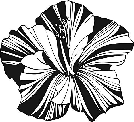 Amazon.com: Pretty Black and White Stripe Flower Art Vinyl.