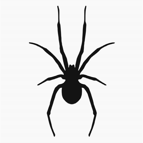 Black widow spider clipart.