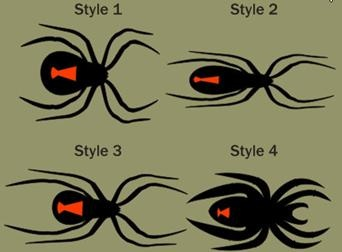 black widow spider bite clipart #17
