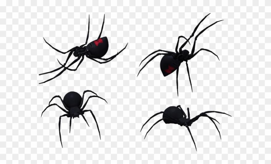 Spider Clipart Black Widow Spider.