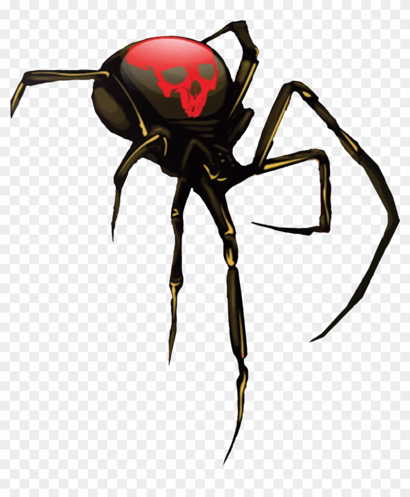 Black Widow Spider Png, Transparent Png.