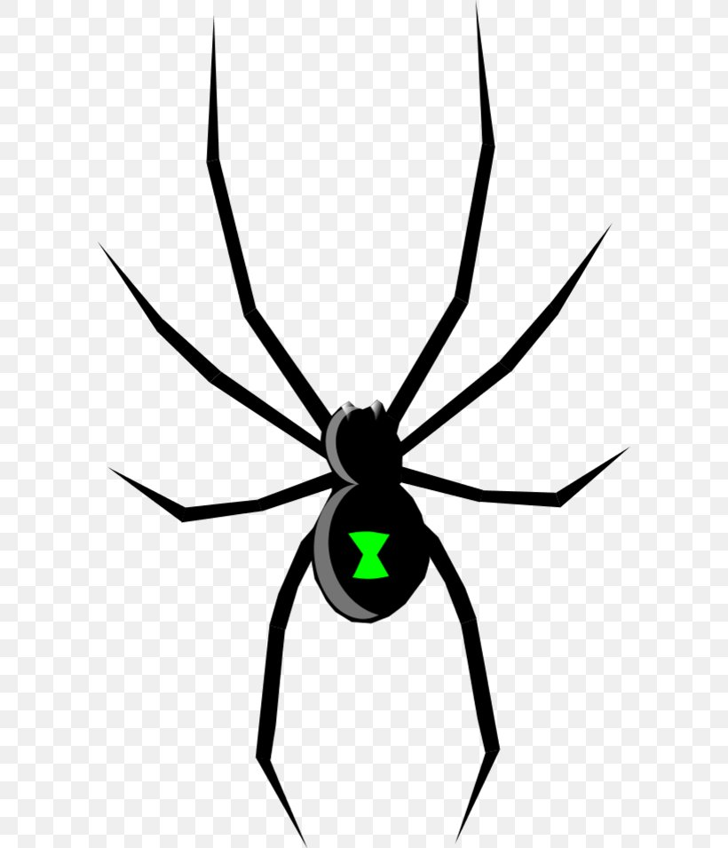 Black Widow Spider Drawing Clip Art, PNG, 600x955px, Black.