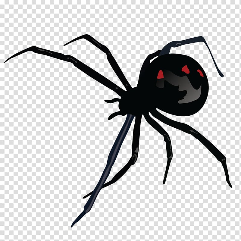 Spider Bite transparent background PNG cliparts free.