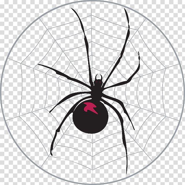Worksheet Addition Number Mathematics, spider web.