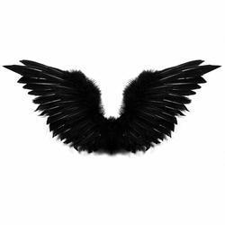 Wings Angel.