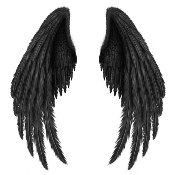Transparent Black Wings PNG Clipart Picture.